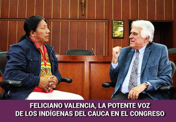 Cómo los indígenas del Cauca se convirtieron en un poder que cuenta en Colombia