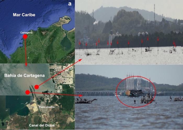 ¿Se nos roban la Bahía de Cartagena?