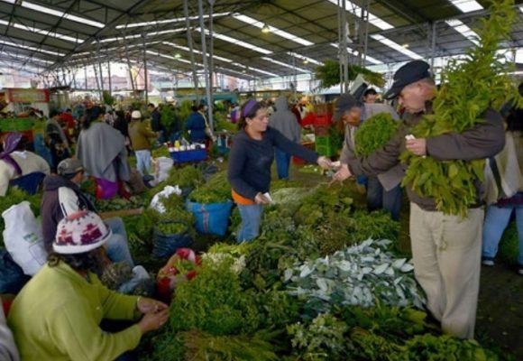 El festival más grande de hierbas está en Bogotá