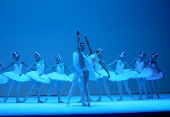 'El Lago de los Cisnes' se toma el Teatro Colón de Bogotá