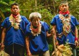 Taitas del Amazonas le dicen basta a los impostores del Yagé