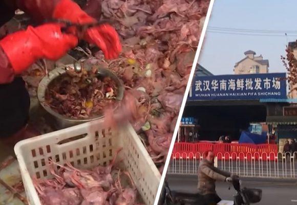 [VIDEO] El asqueroso mercado de China de donde salió el Coronavirus