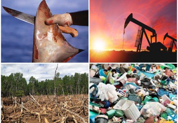Las 4 problemáticas ambientales que deben quitarle el sueño al gobierno