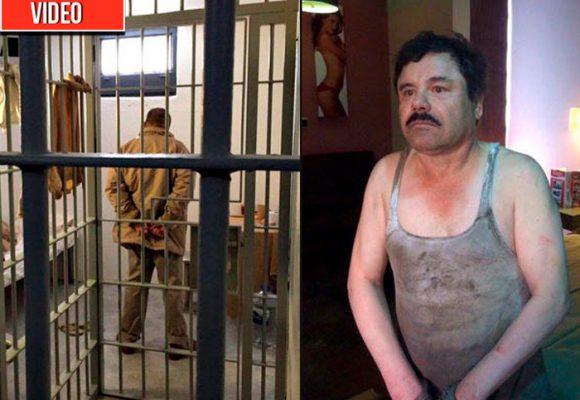 Revelador video del operativo en el que cayó el Chapo Guzmán