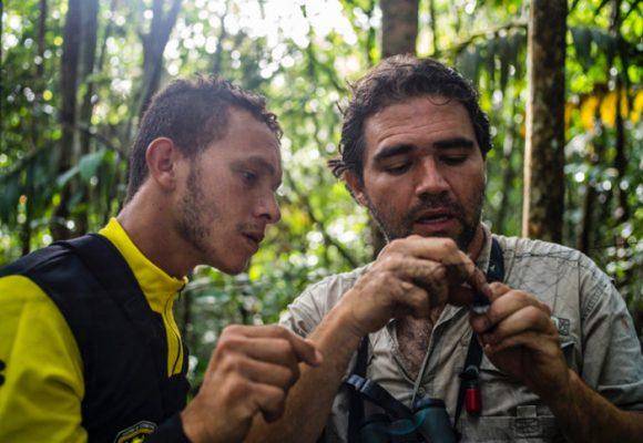 Pajariando con las Farc, la fórmula del biólogo Diego Calderón