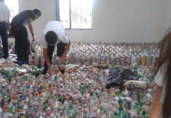 Madera plástica para salvar el planeta