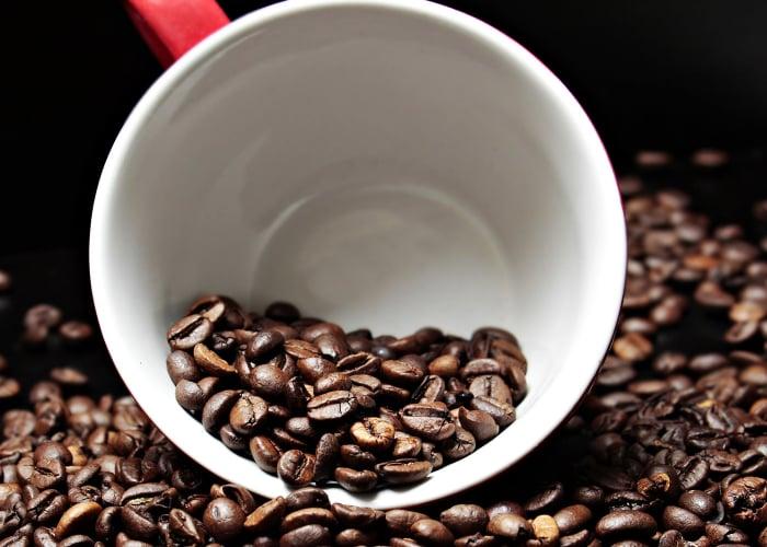¿Cómo llegó el café a Colombia y a Nariño?