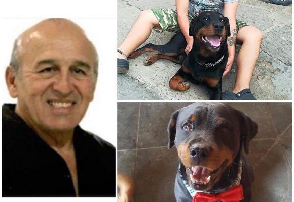 Exmagistrado auxiliar de la Corte Suprema habría matado a un perro a tiros