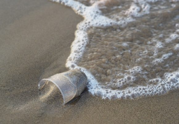 La iniciativa que impulsó el reciclaje en Tierra Bomba