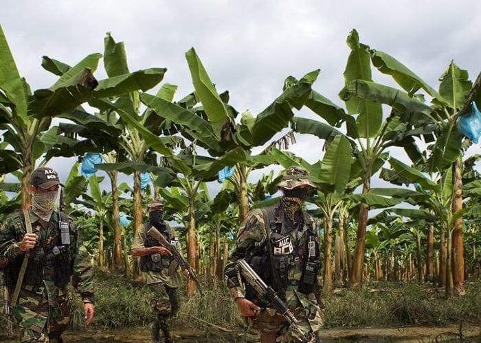 Sobre la relación entre el sector bananero y los paramilitares en Colombia