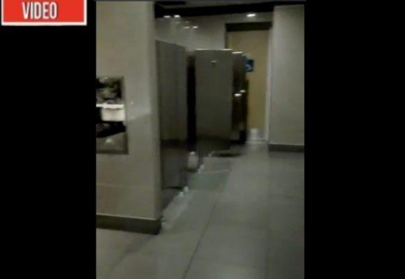 ¿Fantasmas aterrorizan en los baños de El Dorado?