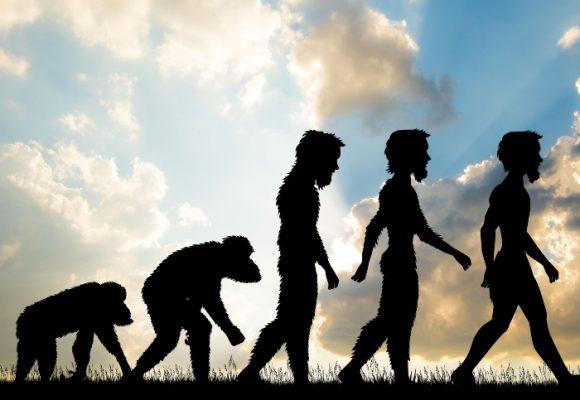 Lecciones clave para la evolución social