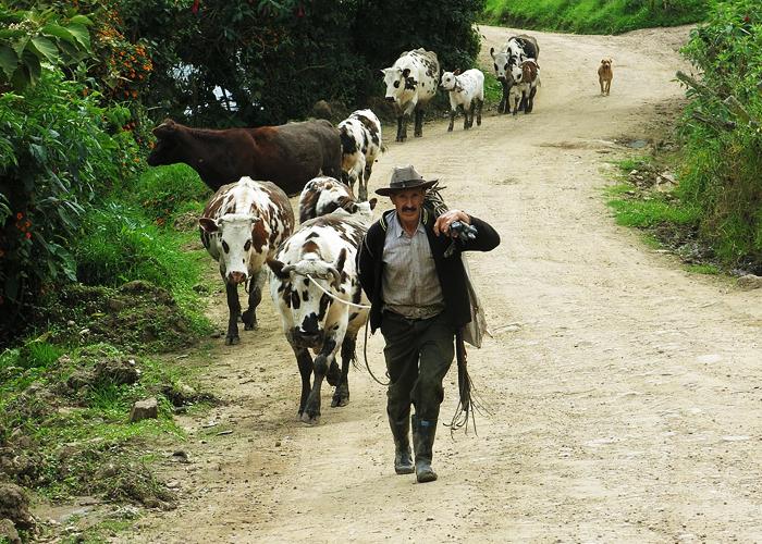 La cuestión agraria: vigencia del pensamiento de Estanislao Zuleta