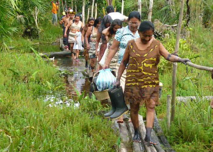 Coronavirus y riesgos de extinción en la Amazonia