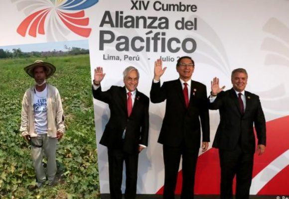 ¿Qué tanto ha beneficiado la Alianza del Pacifico al agro en Colombia?