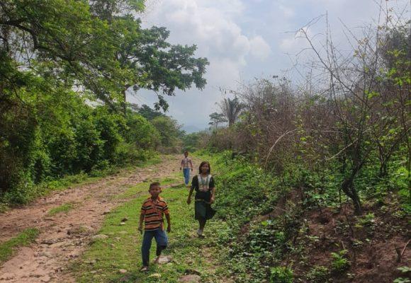 Coronavirus, el apocalipsis de los indígenas Yukpa en el Cesar