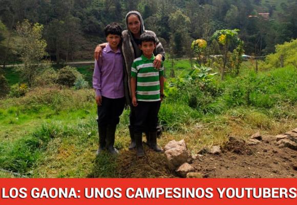 Desde el campo les dan sopa y seco a los patéticos influencers colombianos