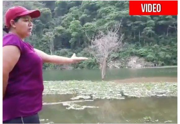 VIDEO: 'EPM convirtió el río Cauca en una laguna putrefacta'