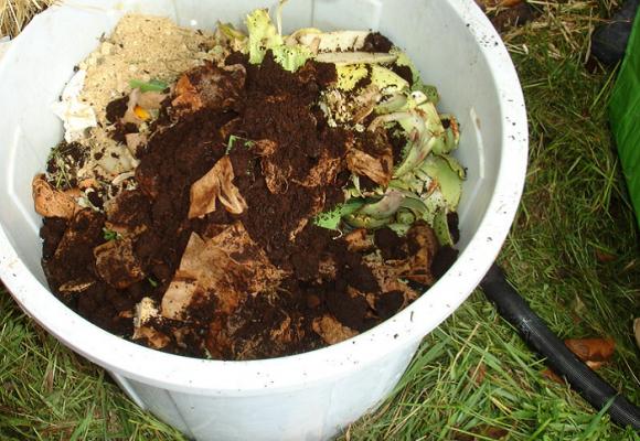Compostaje, una forma de practicar la responsabilidad ambiental