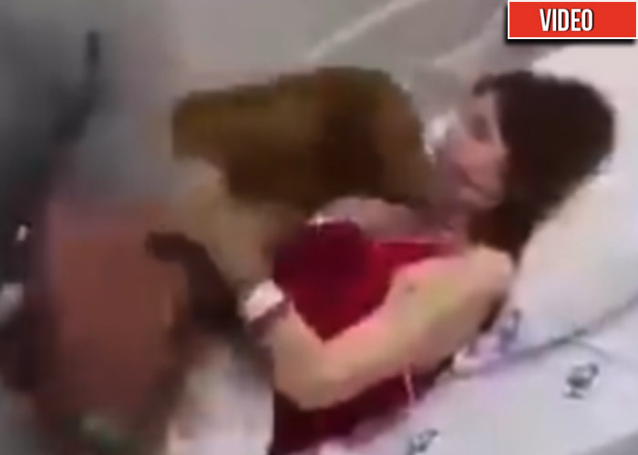 Abrazar a su perro: el último deseo de una mujer agonizando