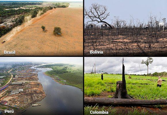 Colombia, en el top de los países que más tumban bosques