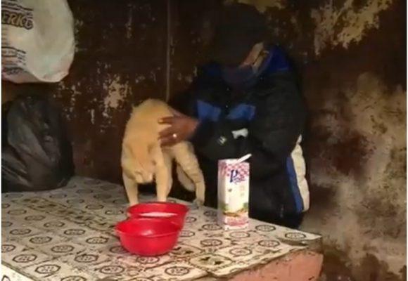 Hombre de 68 años se quemó la cara por salvar a su gato