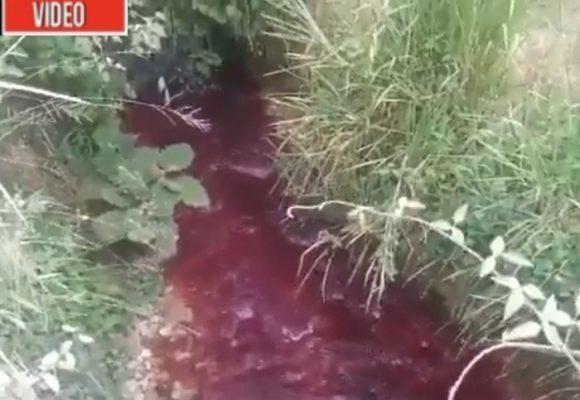 Ríos que parecen de sangre: el saldo de la minería ilegal en el Cauca
