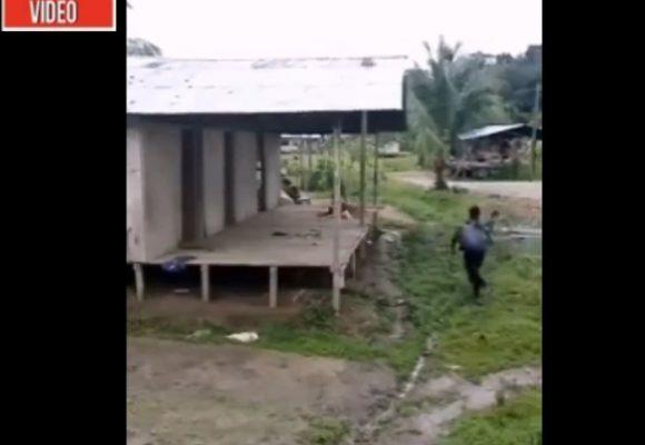 VIDEO: En este enfrentamiento murió niña indígena de 9 años