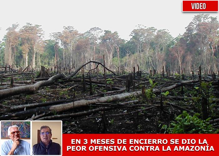 """""""Con la pandemia la naturaleza está hablando, y nos está hablando fuerte"""""""