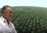 Las 30 mil hectáreas de Sarmiento Angulo en los Llanos Orientales