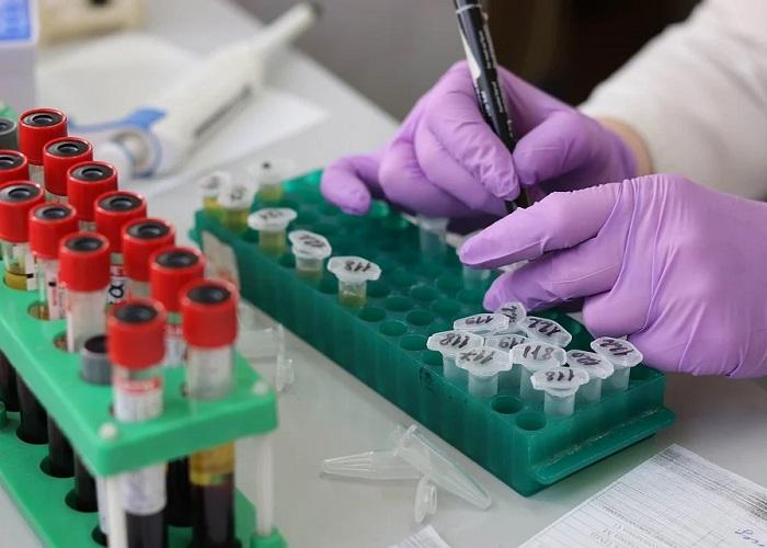 TIDIS para ciencia, tecnología e innovación: una buena noticia