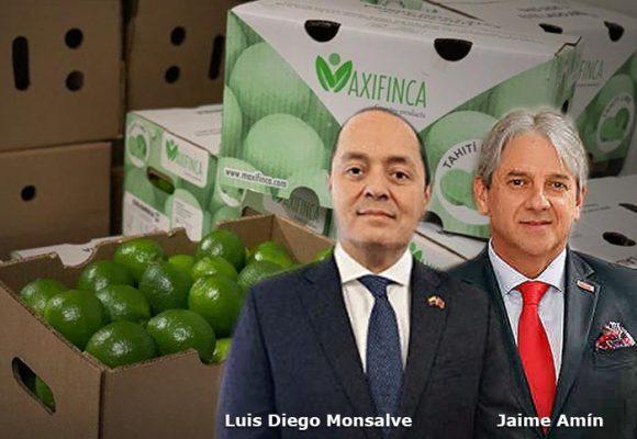 Limones y aguacates colombianos llegan a Dubai y China