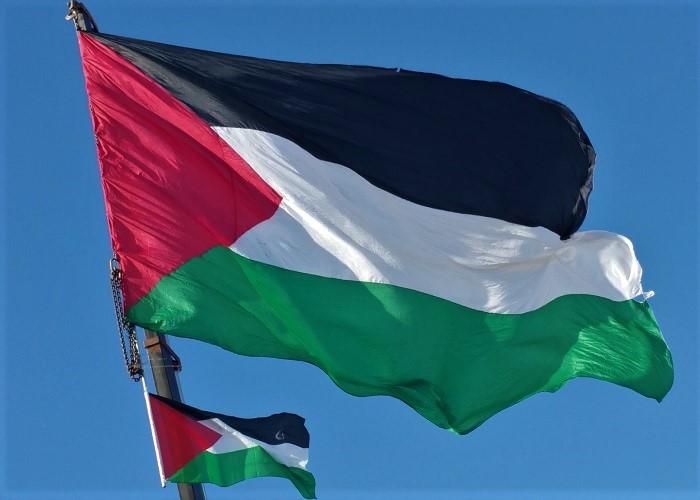 Condenamos la situación de violencia actual en Palestina