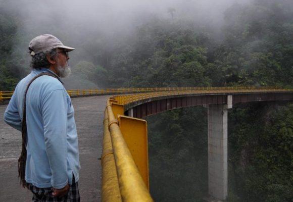 La gran carretera que amenaza a la Amazonía colombiana