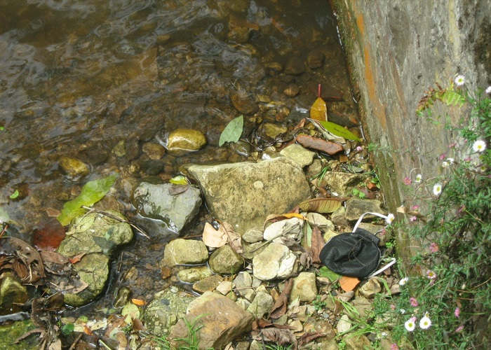 ¿Quién botó este tapabocas a la quebrada La Vieja en Bogotá?