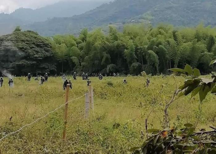 Alerta por denuncias de arremetida violenta del ejercito en Corinto, Cauca