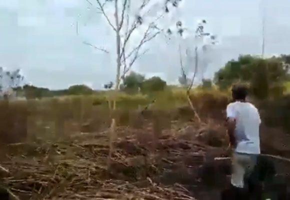 La pesadilla de Llano Verde en Cali no termina: incendian huerta comunitaria