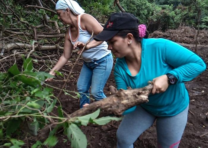 'Dama verde', un proyecto ambiental liderado por mujeres excombatientes