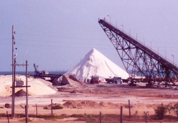 La Guajira, territorio de procesos productivos significativos