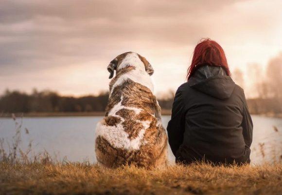 El vínculo único con su mascota puede mejorar su vida