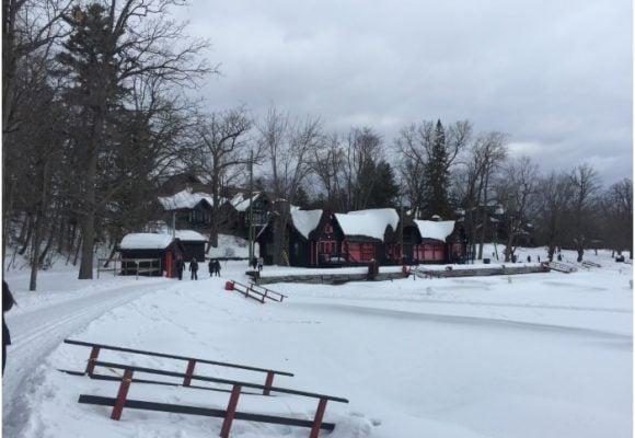 La adversidad de la cuarentena; un invierno forzado