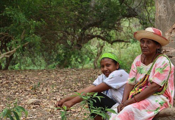 El estado de cosas inconstitucional en La Guajira