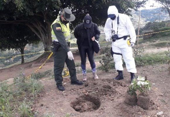 Un grupo de hombres torturó, mató y abusó sexualmente de 42 gatos en Medellín