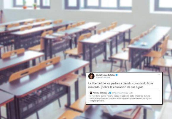 ¿Qué tiene el Centro Democrático contra la educación?