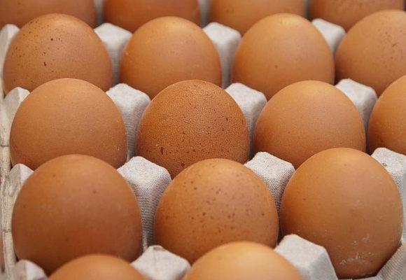 Huevo podrido