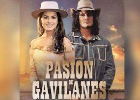 Ningún programa destrona a 'Pasión de Gavilanes'