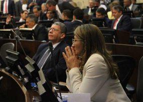 El partido Farc no estuvo en el debate sobre fracking