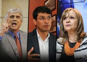 Ya están 6 peleándose la candidatura presidencial verde