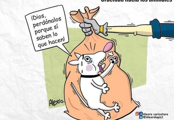 Caricatura: ¿Hasta dónde llegará la crueldad contra los animales?