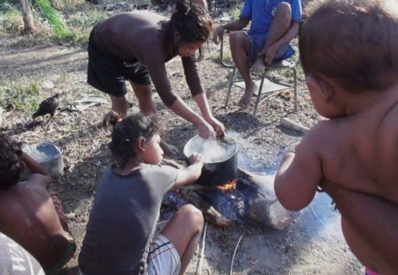 Los Nukak-Makú acorralados por palma, coca y bandas criminales